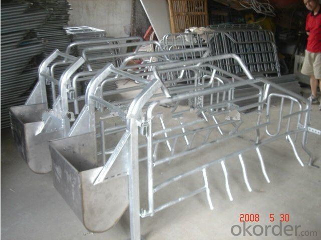 Galvanized Gestation Stall for Cows&Cattle(1900*700mm)