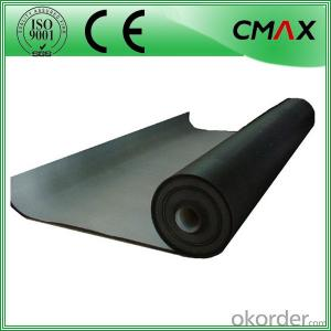 Membrane HDPE Back Pool Liner by Biggest China Factory