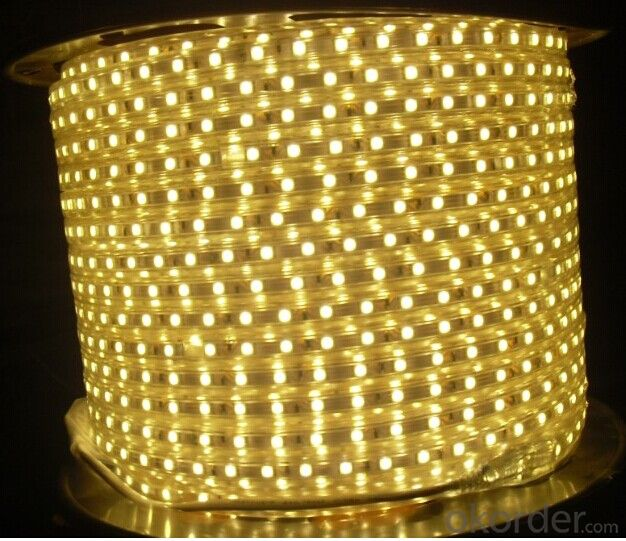 Flexible LED Strip Rgb/White/Warm White SMD 5050 with CE ROHS