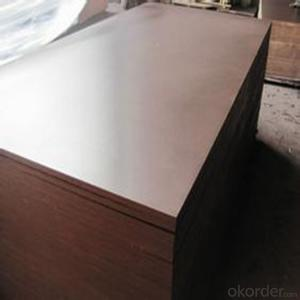 18mm Black Film Faced Plywood / Brown Film Faced Plywood