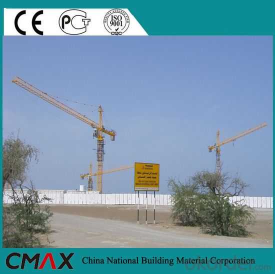 Manufacturer of Inner-climbing 6t Tower Crane (QTZ5610 QTZ5013)