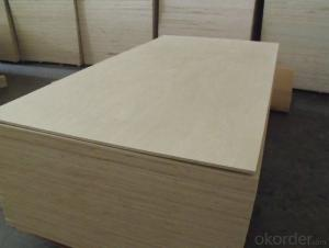 Pine Plywood for Furniture wood veneer 18mm White Birch Plywood,Poplar Core Plywood