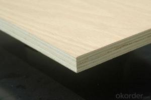 Birch Plywood for Furniture  Wholesale finnish  wood veneer  B/C, C/D, D/E and E/F Grade