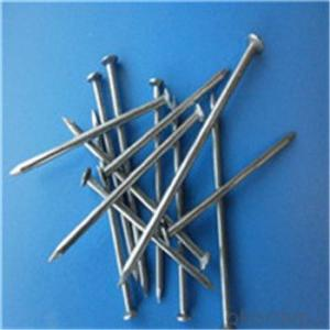 Common Nails /Iron Nail /Wire Nail Factory Made in China Low Price