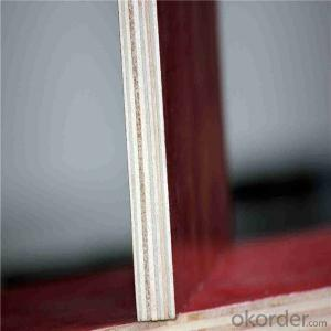 Phenolic Film Faced Plywood and Poplar Core Film Faced Plywood/Concrete Film Faced Plywood