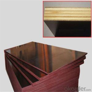 Film Faced Plywood/Shuttering Plywood/Construction Plywood/Marine Plywood
