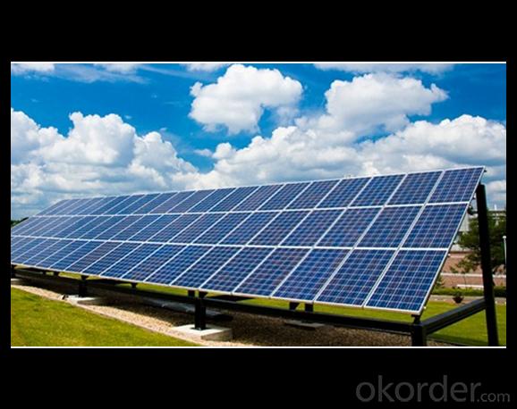 10W Direct Factory Sale Price 260-300Watt Solar Panels
