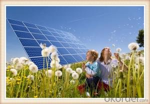 105W Efficiency Photovoltaic Chinese Solar Panels For Sale 5-200W