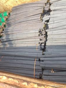 Deformed Steel Bar with Reinforced Function for Construction
