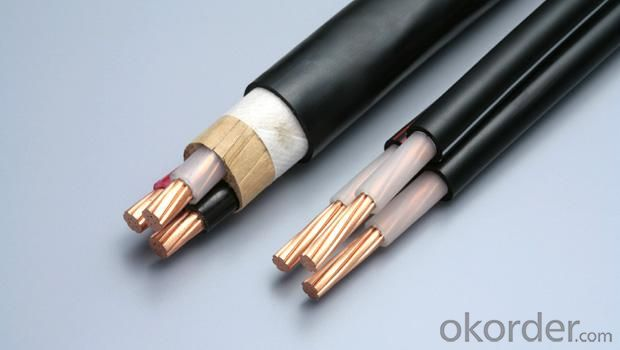 Fire Rated Cable Mica Fire Resistant Cable Can Pass IEC60331 BS6387C.W.Z AS/NZS3013 WS52FIRE TEST