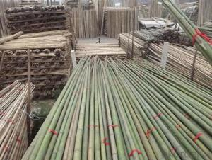 Natural White Bamboo Pole Natural White Bamboo