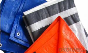 HDPE Tarpaulin Customized for Union States