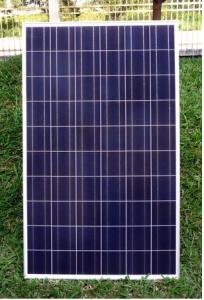 250W Poly Solar Panel in China with Full Certificate and High Quality