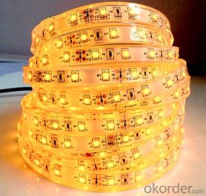 12V/24V Led  Flexible Strip Light SMD3528 5050