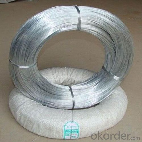 Electro Galvanized Wire Binding Wire BWG22 for SA market 7kg Per Roll