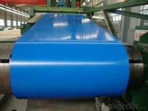 Color Coated Steel Coil Ral Color in Required