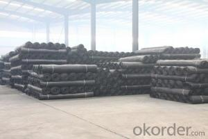 Highway Polyester Geogrid with CE certificate