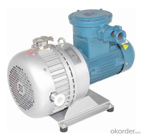 Dry Scroll Explosion-proof Vacuum Pumps
