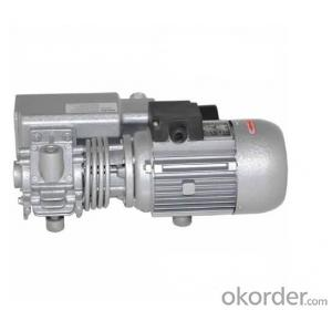 China Single Stage Rotary Vane Vacuum Pumps