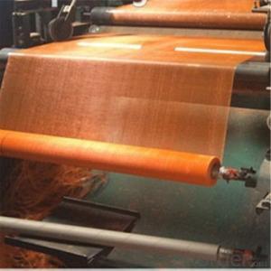 Fiberglass Mesh 40g External Wall Insulating Fabric