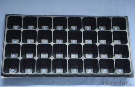 Nursery Seedling Tray with many holes in according to your request