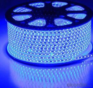 Led Strip Light with High Quality EU Market Lead