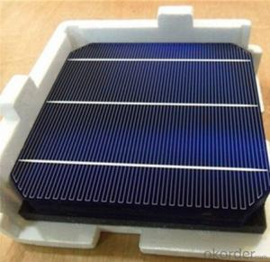 Mono Solar Cells 156X156MM2  High Efficiency