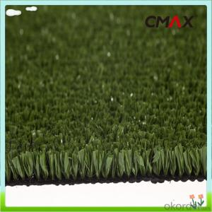 Tencate Thilon FIFA 2 Star Soccer Football Grass Courts