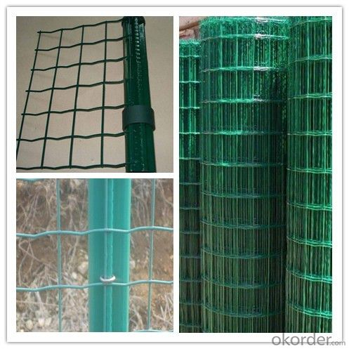 Hot Dipped Galvanized Durable Swimming Pool Euro Fence