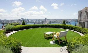 Economy Garden / Landscape Artificial Grass in China