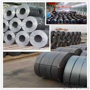 Prime Hot Rolled Coil China Supplier/ HRC
