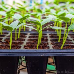 Plug Trays (Growing and Seedling) Greenhouse Usage HIPS Made Plastic Plug Tray