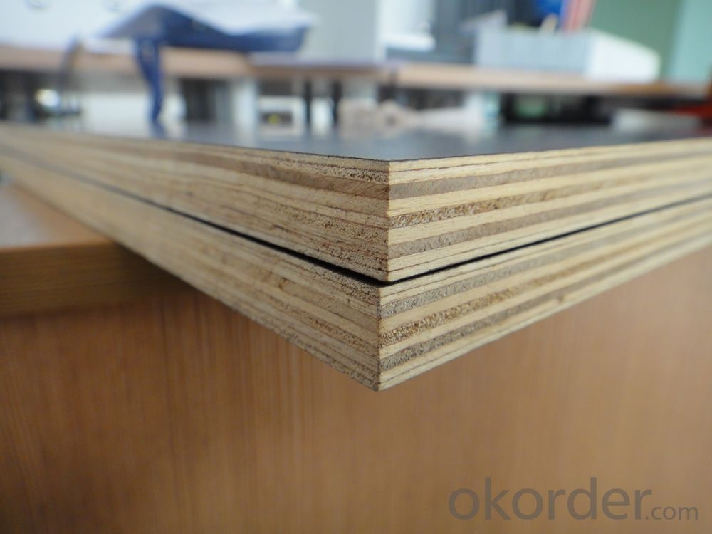 Brown Film Faced Plywood, Concrete Formwork Shuttering Plywood
