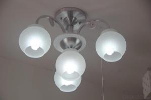 LED Light Bulbs with Good Quality and Low Price