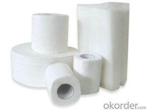 Best Price Big Supplier China Wallhold Paper Washroom Paper Use