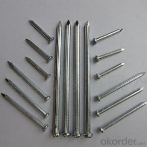 Black Stainless Steel Concrete Nails Manufacture From China