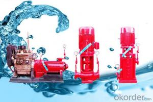 Water Centrifugal Pump High Sales Standard