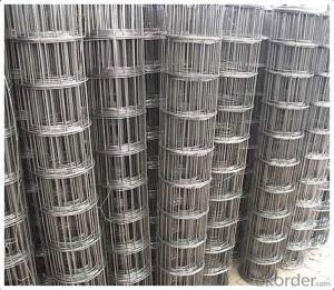 Electro Galvanized Welded Wire Mesh for Construction