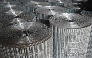 Galvanized and PVC Coated Welded Wire Mesh in High Quality