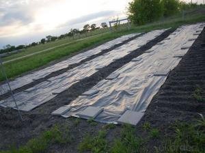 Wooden Silt Fence/ Polypropylene Woven Fabric/ Landscape Fabric