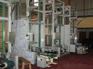 Large Slanting and Auger Elevator for Packaging Industry
