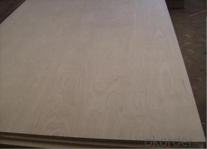 CD Grade Laminated Birch Plywood in 9mm 12mm 15mm and 18mm