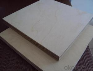 Furniture Grade Baltic Russian Birch Plywood