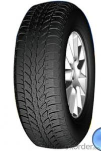 Passager Car Radial Tyre A501 with High Speed