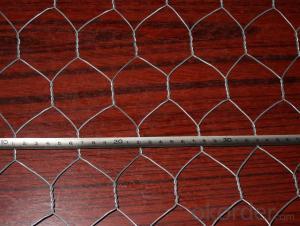 Galvanized Chicken Wire Mesh/Hexagonal Wire Mesh From China