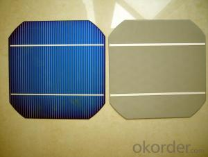 4.54W 3 BB A Grade Mono Solar Cell156mm with19-19.2% Efficiency approved by CE TUV