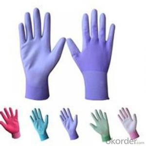 Blue Vinyl Gloves Hand Plus in Low Powder
