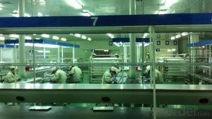 Mono Solar Cells156mm*156mm in Bulk Quantity Low Price Stock 19.0