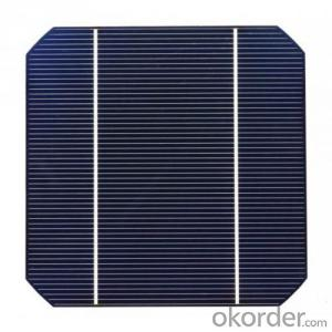 Mono Solar Cells156mm*156mm in Bulk Quantity Low Price Stock 19.6