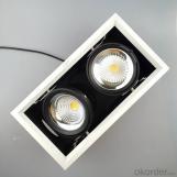 Indoor lighting AR111 LED Grille Spotlight Double-headed 2*20W
